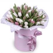 51 белый и розовый тюльпан в коробке