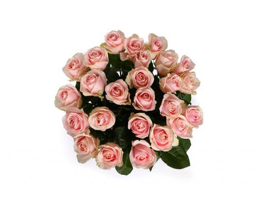 25 нежно розовых роз в букете