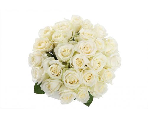 25 белых роз Аваланч в букете