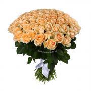 101 кремовая роза Пинч Аваланч