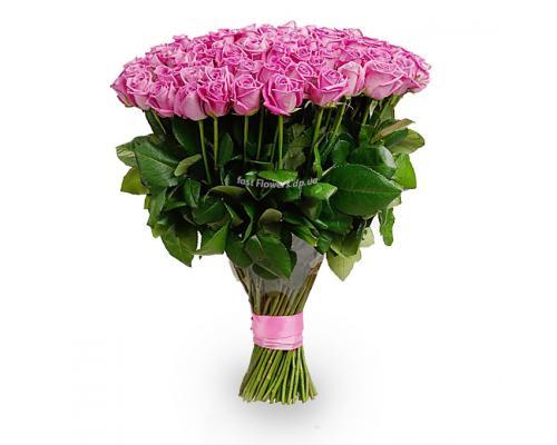 101 розовая роза сорт Аква