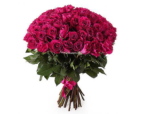51 малинова троянда Шангрі-Ла