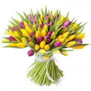 101 тюльпан желтый и фиолетовый в букете